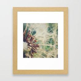 Dandelion || Spores Framed Art Print