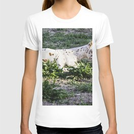 The baby Colt T-shirt