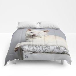 Cream Shiba Inu Dog Comforters