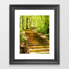 Steps Through The Forest Framed Art Print