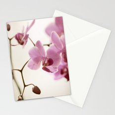 Seraphina Stationery Cards