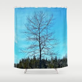 Alone and Leafless Shower Curtain