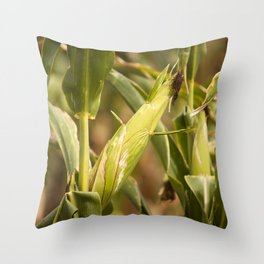 Corn harvest 2018 Throw Pillow