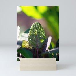 Glowing Sage Leaf Mini Art Print