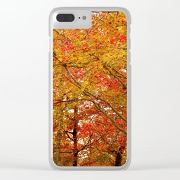 PHOTOGRAPHY / TREES 02 Clear iPhone Case