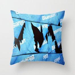 Broken Barrier Throw Pillow
