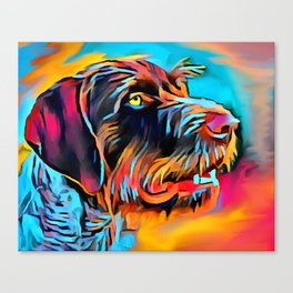 German Wirehaired Pointer 2 Canvas Print