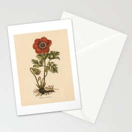 1800s Encyclopedia Lithograph of Anemone Flower Stationery Cards