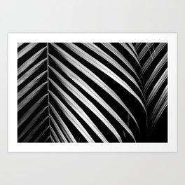 Tropical Darkroom #445 Art Print