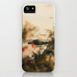 Borth-y-Gest View iPhone Case