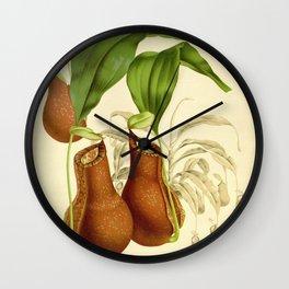 Nephentes Henryana Wall Clock