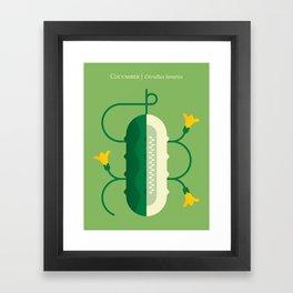 Vegetable: Cucumber Framed Art Print