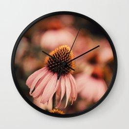 echinacea flowers Wall Clock