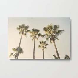 Palms. At the beach. Loving summer Metal Print