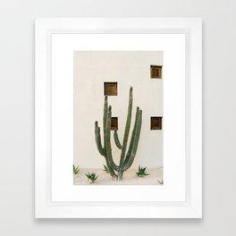 Cabo Cactus IX Framed Art Print