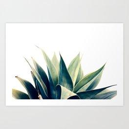 Botanical cactus I Art Print