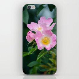 Pink Flower Bush iPhone Skin