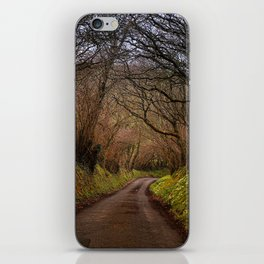 country way iPhone Skin