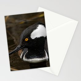 Hooded Merganser Stationery Cards
