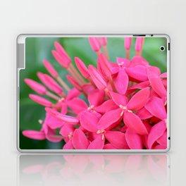Pink Petals CR Laptop & iPad Skin