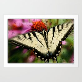 Butterfly and raindrops Art Print