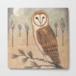 Barn Owl by Donna Atkins Metal Print