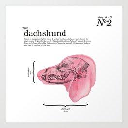 The Dachshund Art Print