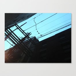 alleyway bunting Canvas Print