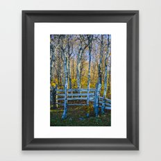 Two birches Framed Art Print