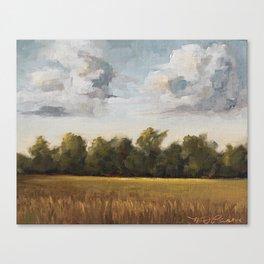 sun-kissed & breezy Canvas Print