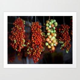 Tomatos Art Print