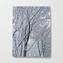 Tree Branches Covered in a Layer of Fresh Snow Metal Print