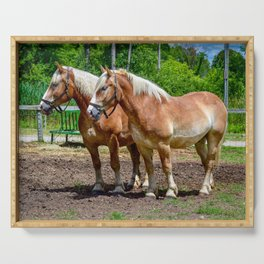 """""""Equine Duo"""" Serving Tray"""