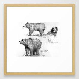 Merrill Coffin Bear Print Framed Art Print