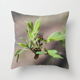 Spring Buds 4 Throw Pillow