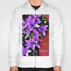 Beautiful purple flowerbush on the wall Hoody