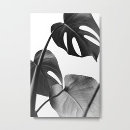 Tropical leaves monochrome Metal Print