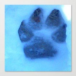 Snow Paw Canvas Print