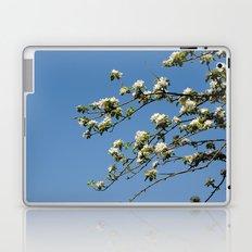 Apfelblüten  Laptop & iPad Skin