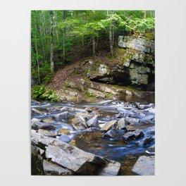 TMP Rapids Poster