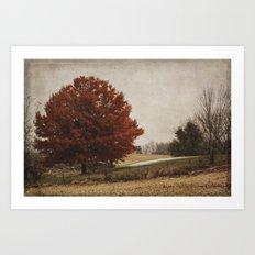 The Royal Oak II Art Print