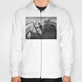 Horses of Instagram II Hoody