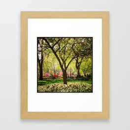 Springtime in NY Framed Art Print