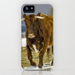 Bully The Bull On A Mission iPhone Case