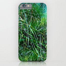 The Lagoons iPhone Case