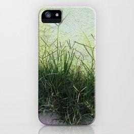 Minimal Flora - Hanging Garden iPhone Case