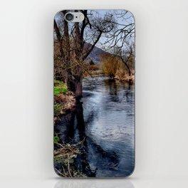 Winterimpression iPhone Skin