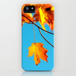 Autumn Leaf on a Branch (Color) iPhone Case