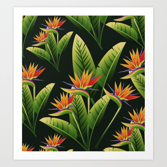 Tropical Flowers vol.4 Art Print