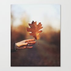 Catching a bit of Autumn Canvas Print